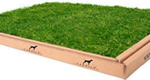 419zR9yYw5L 310x165 - CARNILO Hundeklo aus echtem Rasen, Welpentoilette, Trainingsunterlage, Hundetoilette, stubenrein